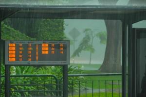 Singapore: horaires de passage en temps réel des prochains bus sous une pluie torrentielle.